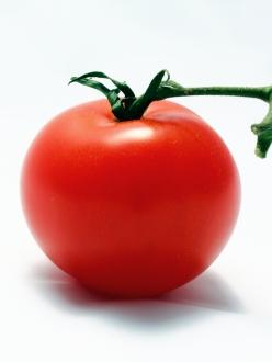 Dietitian Organic Tomato