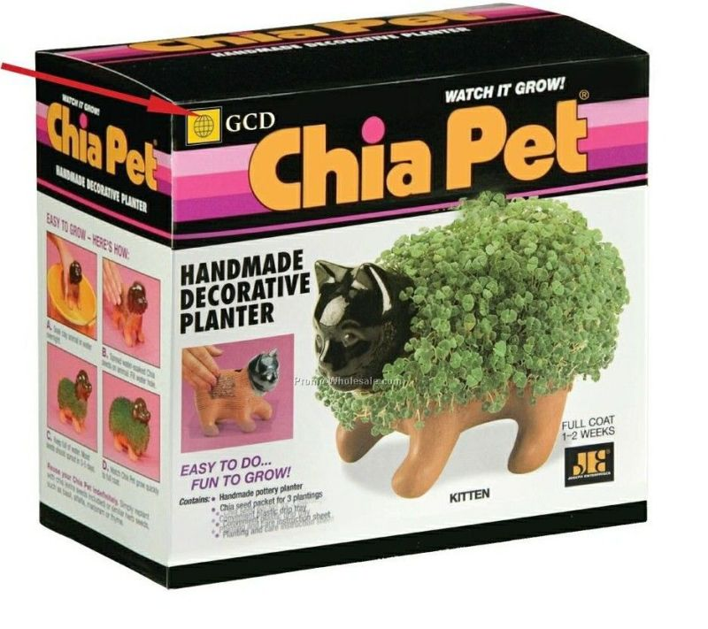 kitten-chia-pet_20090797639
