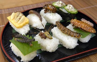 Insect Sushi Platter