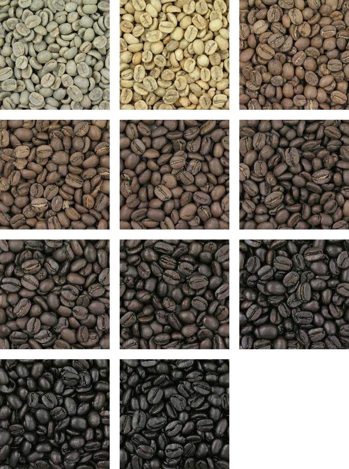 bean gradient