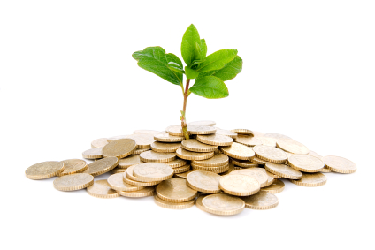 nutrition investing starvrd