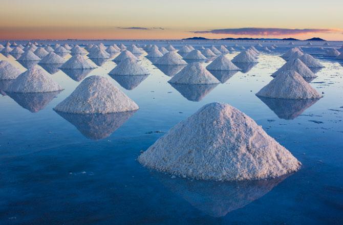 salt starvingrd