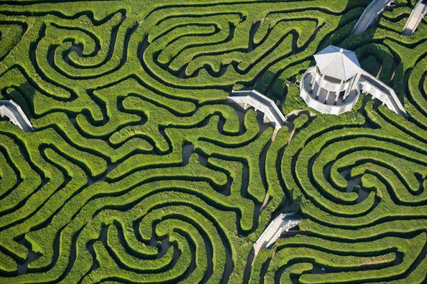 starvingrd maze