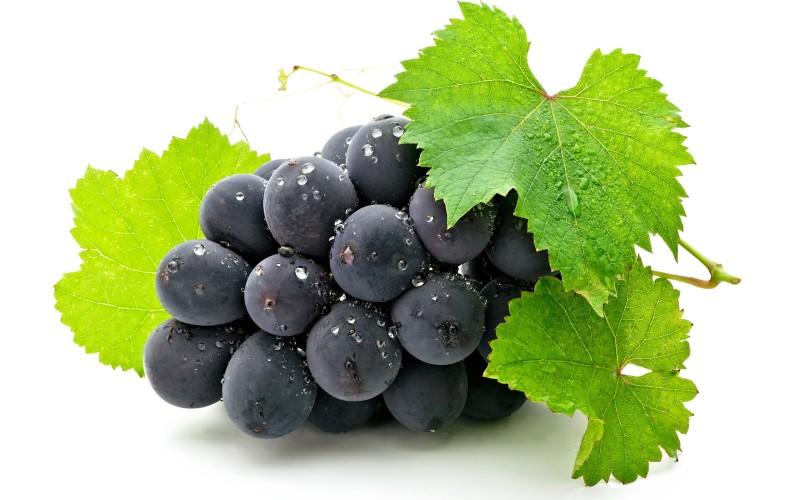 starving_dietitian_grapes_diet