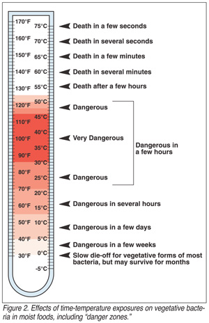 Danger Zone Temps